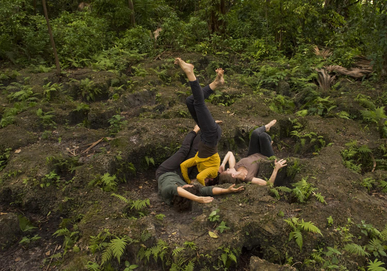 Grass Stains - Jenny Larsson's Land