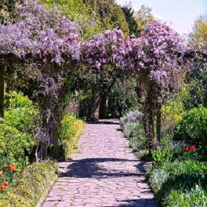 Set in the beautiful Sexby garden of Peckham Rye