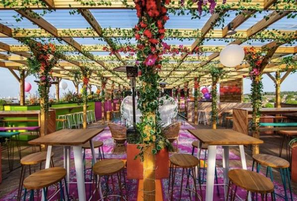 Tropical rooftop oasis in Peckham -