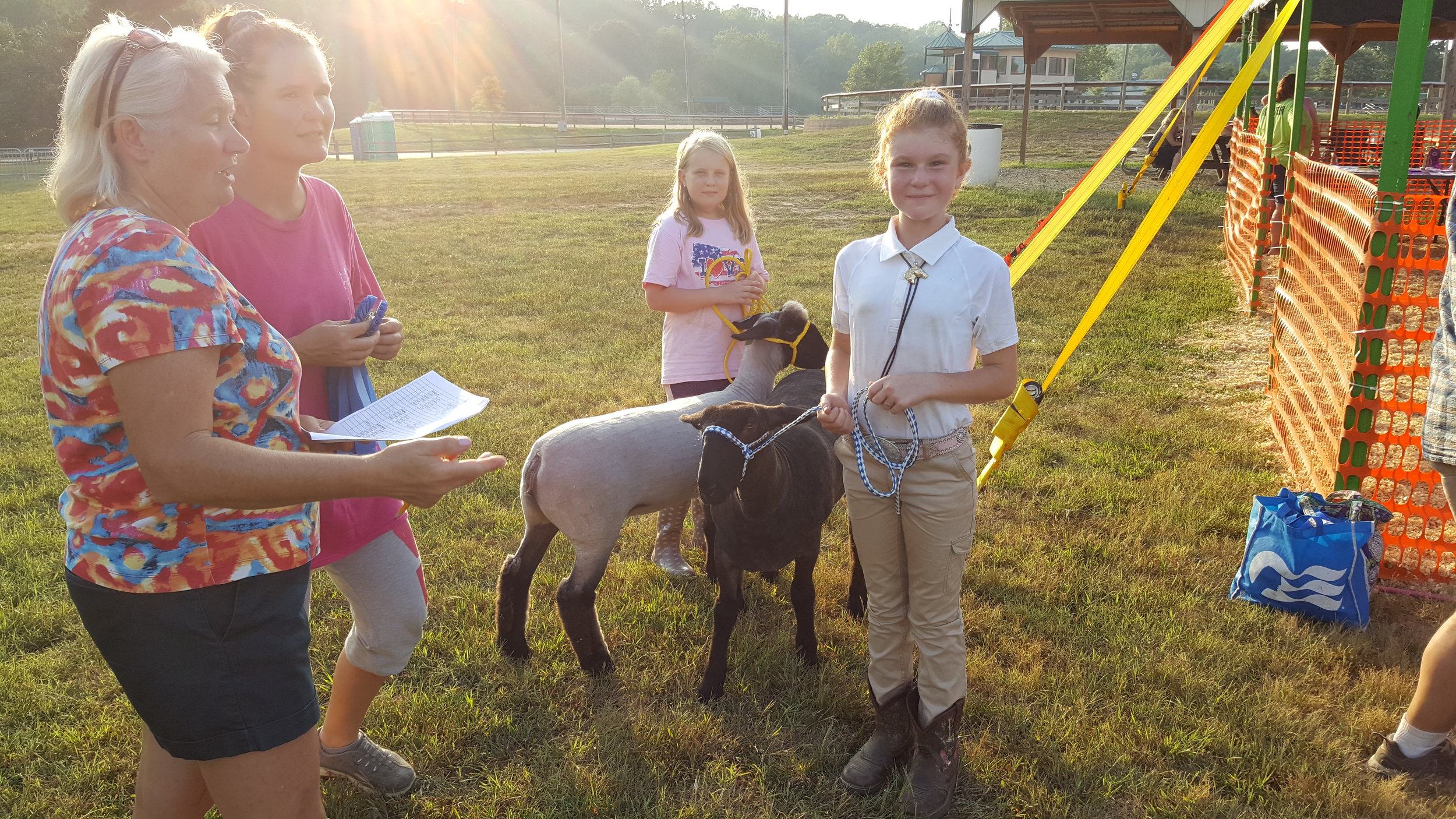 4-H & Open Class Livestock Competitions