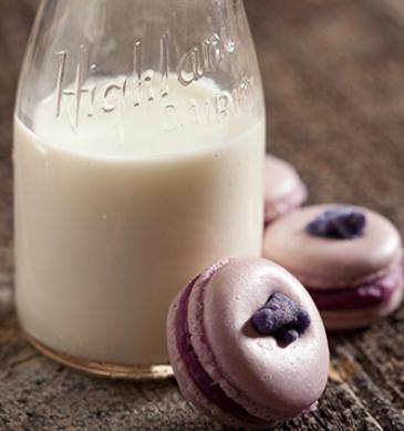 macarons and milk.jpg