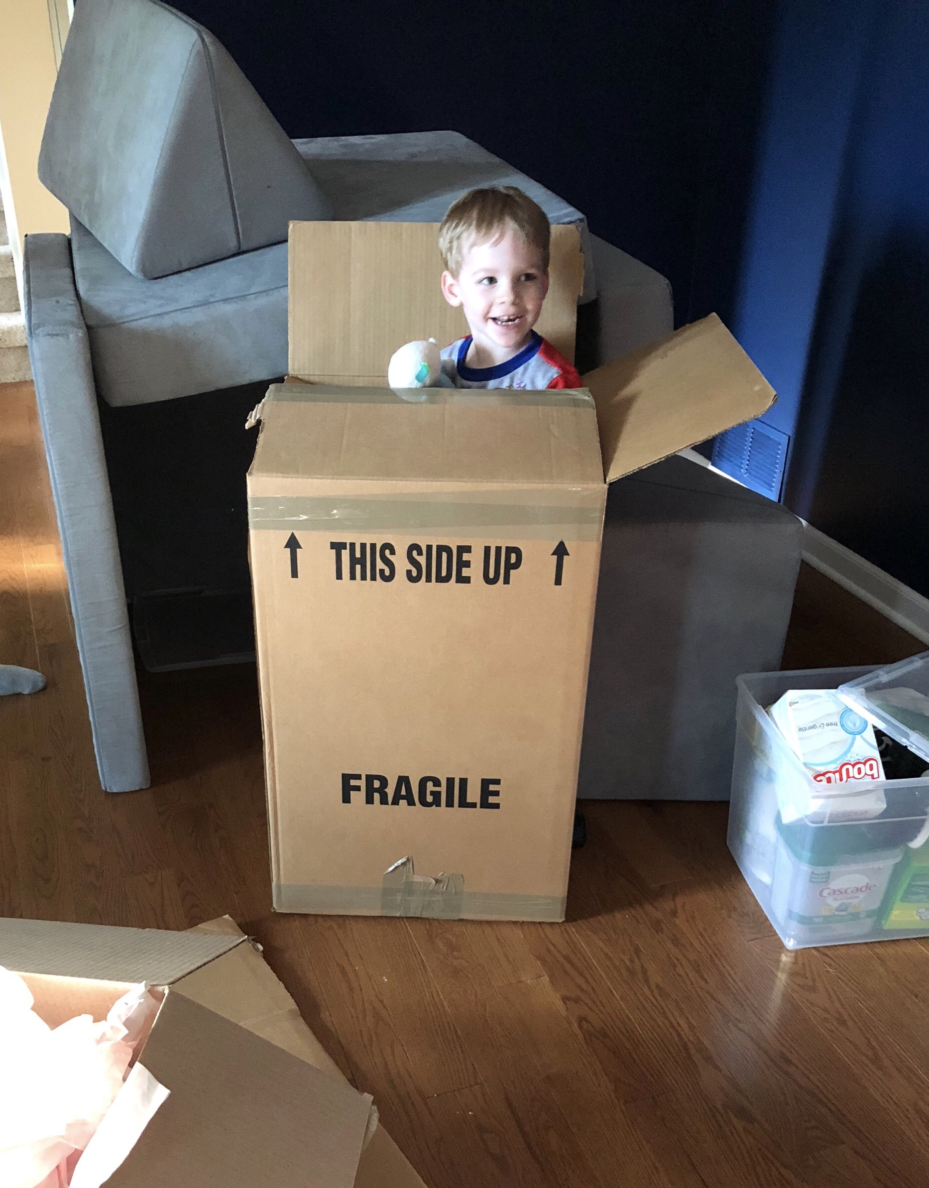 My family and I moved this past summer. Yes, that's my little boy in a box but, also notice the clear, lidded utility bin.