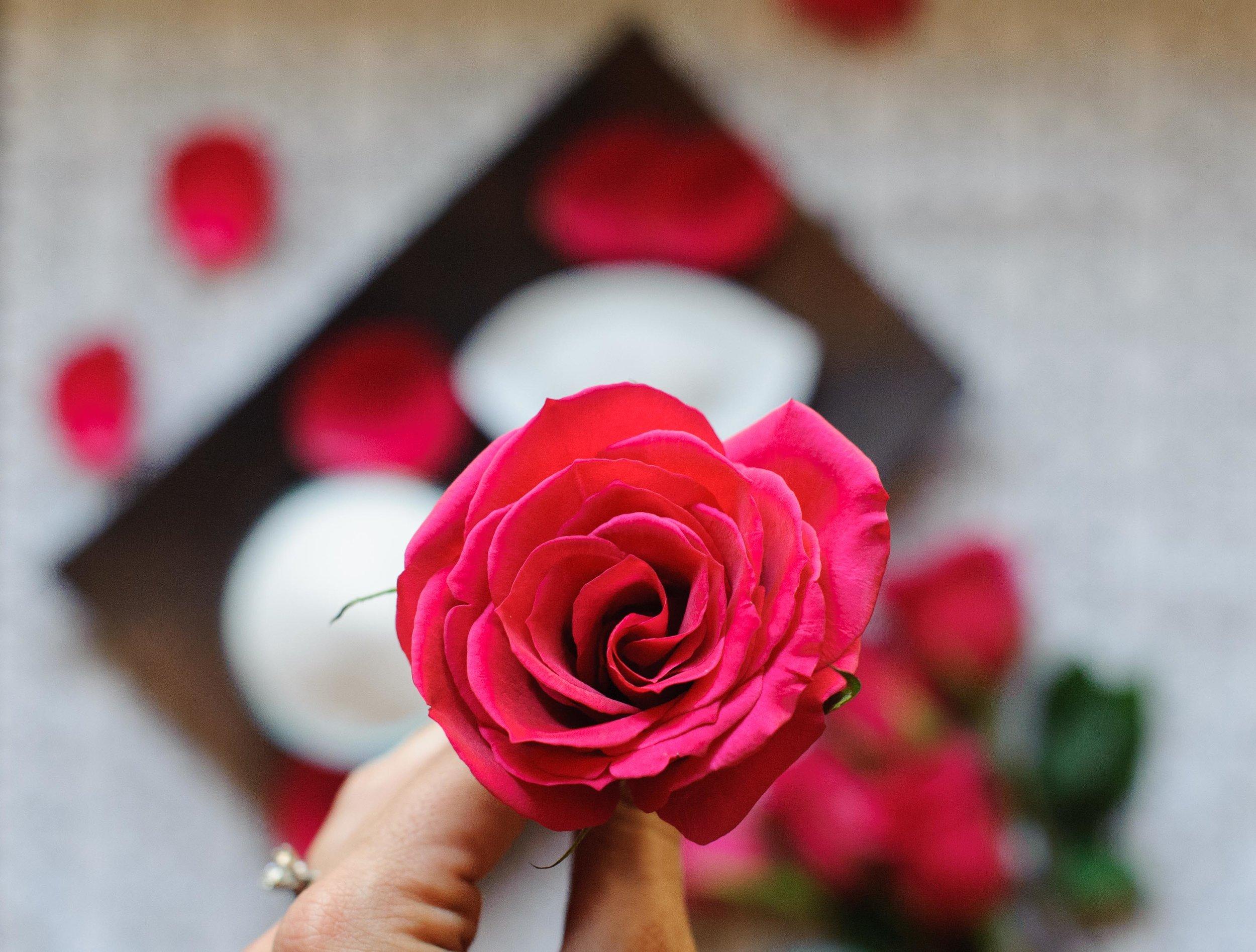 dii-rose-body-scrub