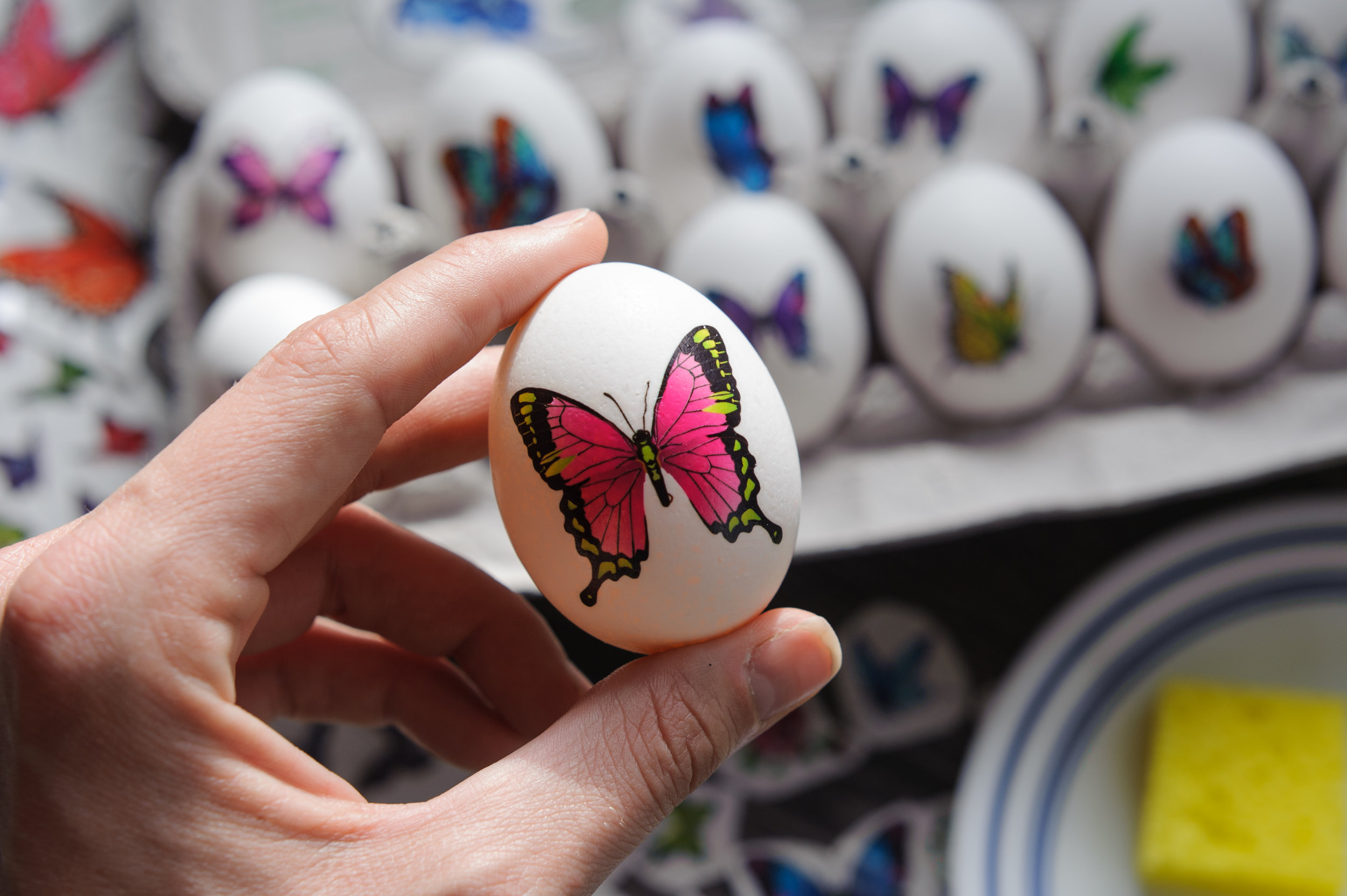 butterfly-tattoo-easter-egg