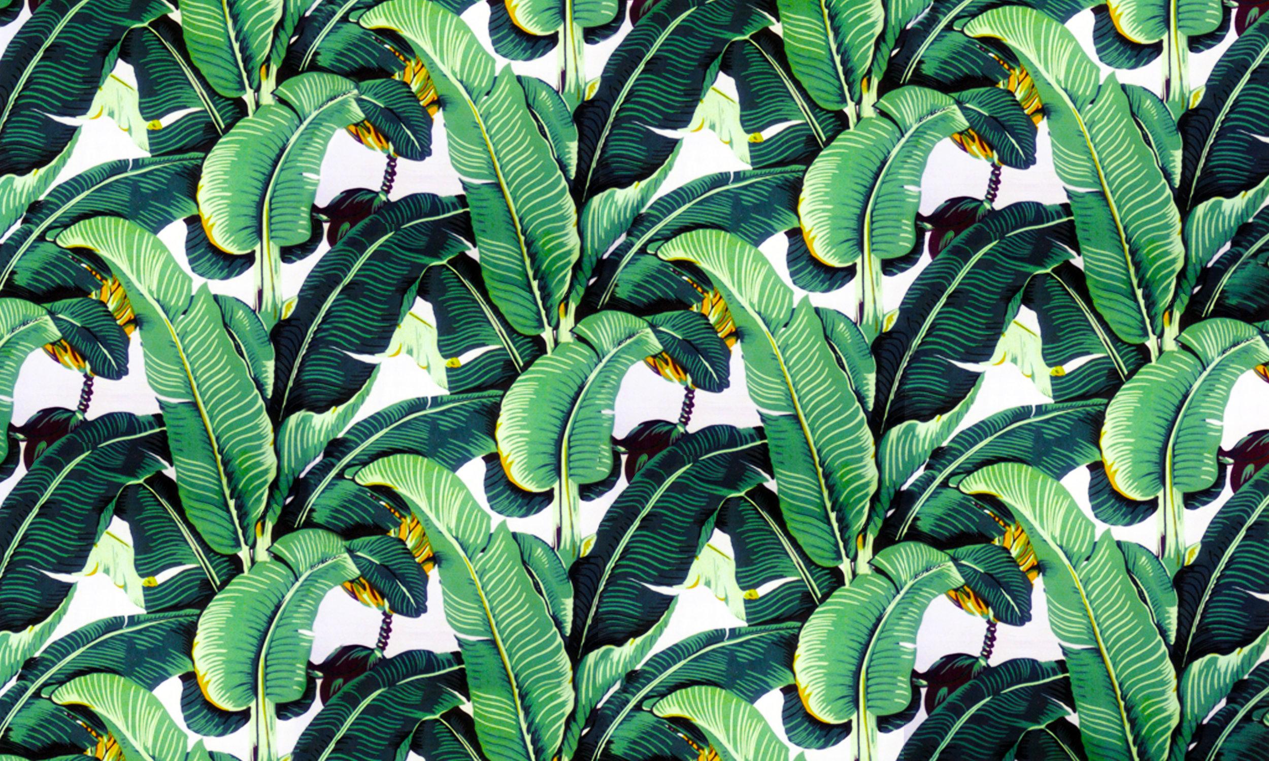 Ontrend Go Banana Leaf Coupar
