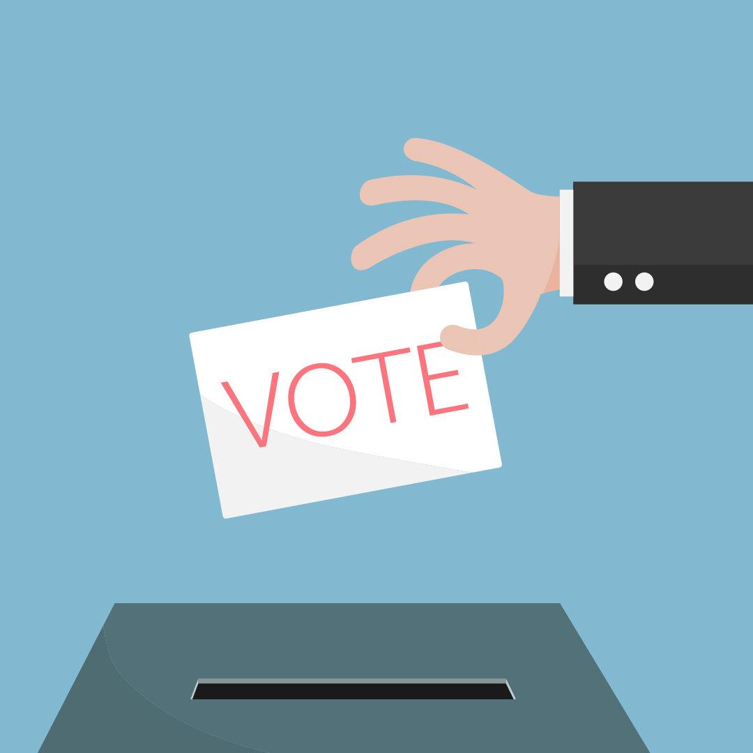 FVSU-DC-Metro-Alumni-Elections.jpg