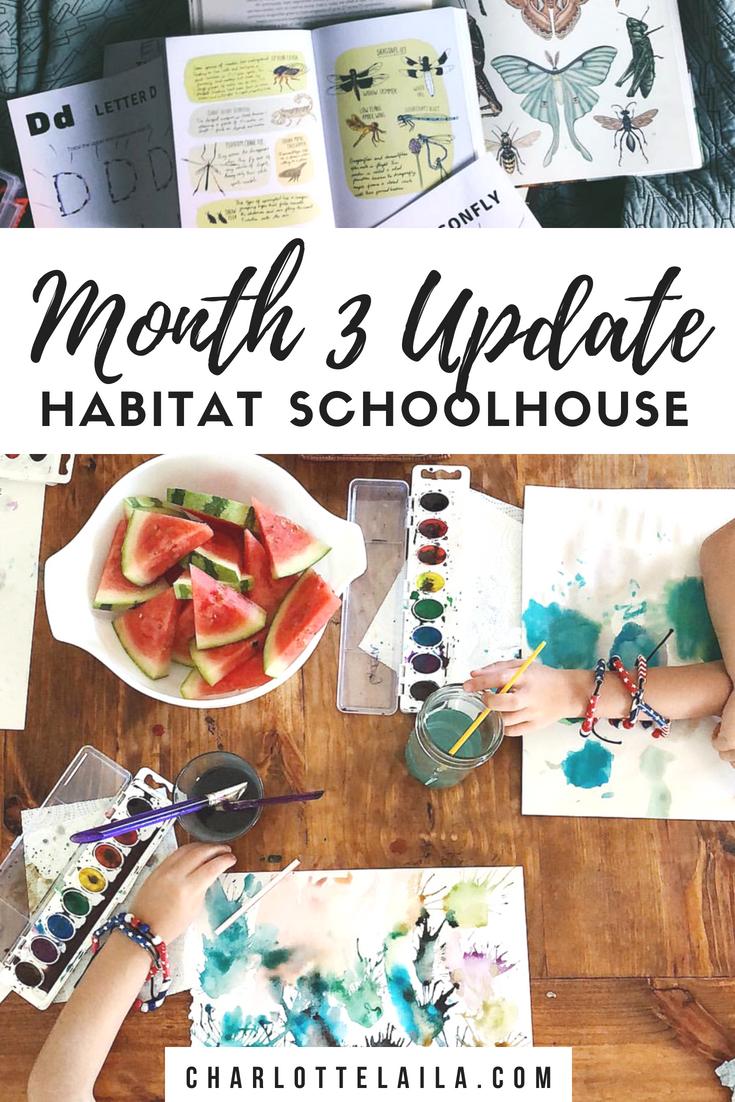 Month three update Habitat schoolhouse