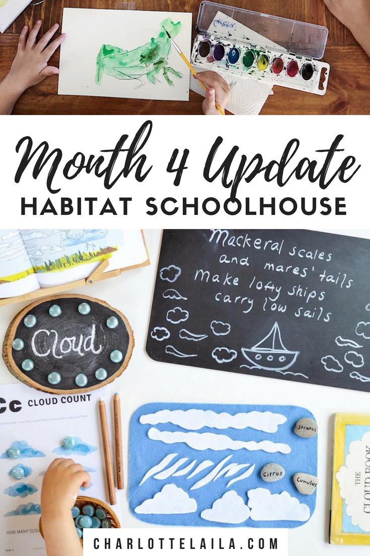 Month four update Habitat schoolhouse
