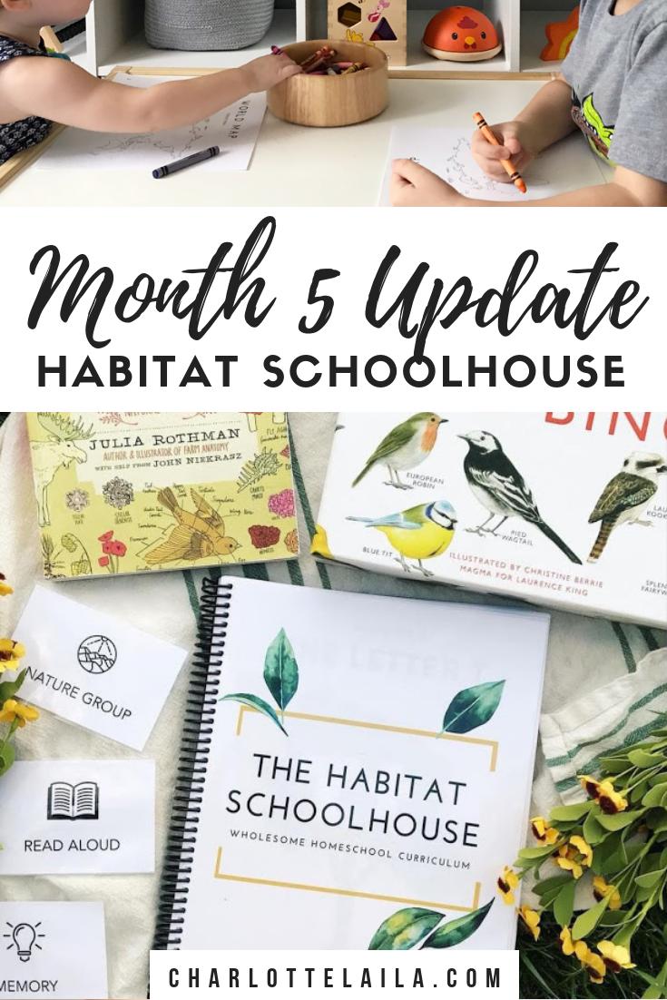Month five update Habitat schoolhouse
