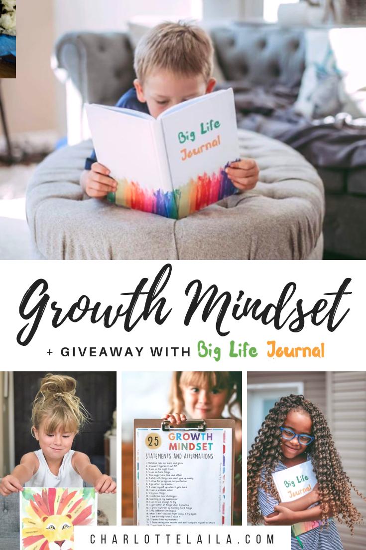 Growth Mindset with Big Life Journal