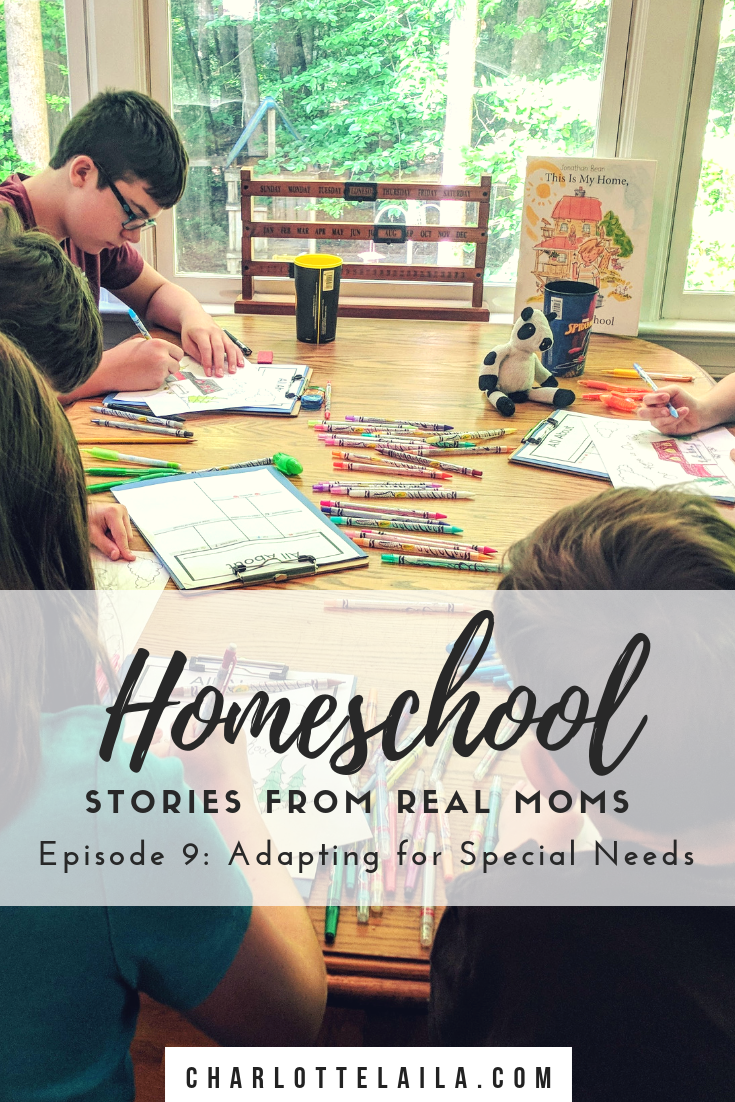 Last month we introduced a new theme on our blog - stories about homeschooling told from real moms. These posts are to encourage you along your homeschooling journey, share experiences and connect with other homeschooling moms all over the world.   This week's homeschooling story is from Breanne. Read below to hear her story about her first year homeschooling her daughter and how she is adapting homeschooling for her special needs children.
