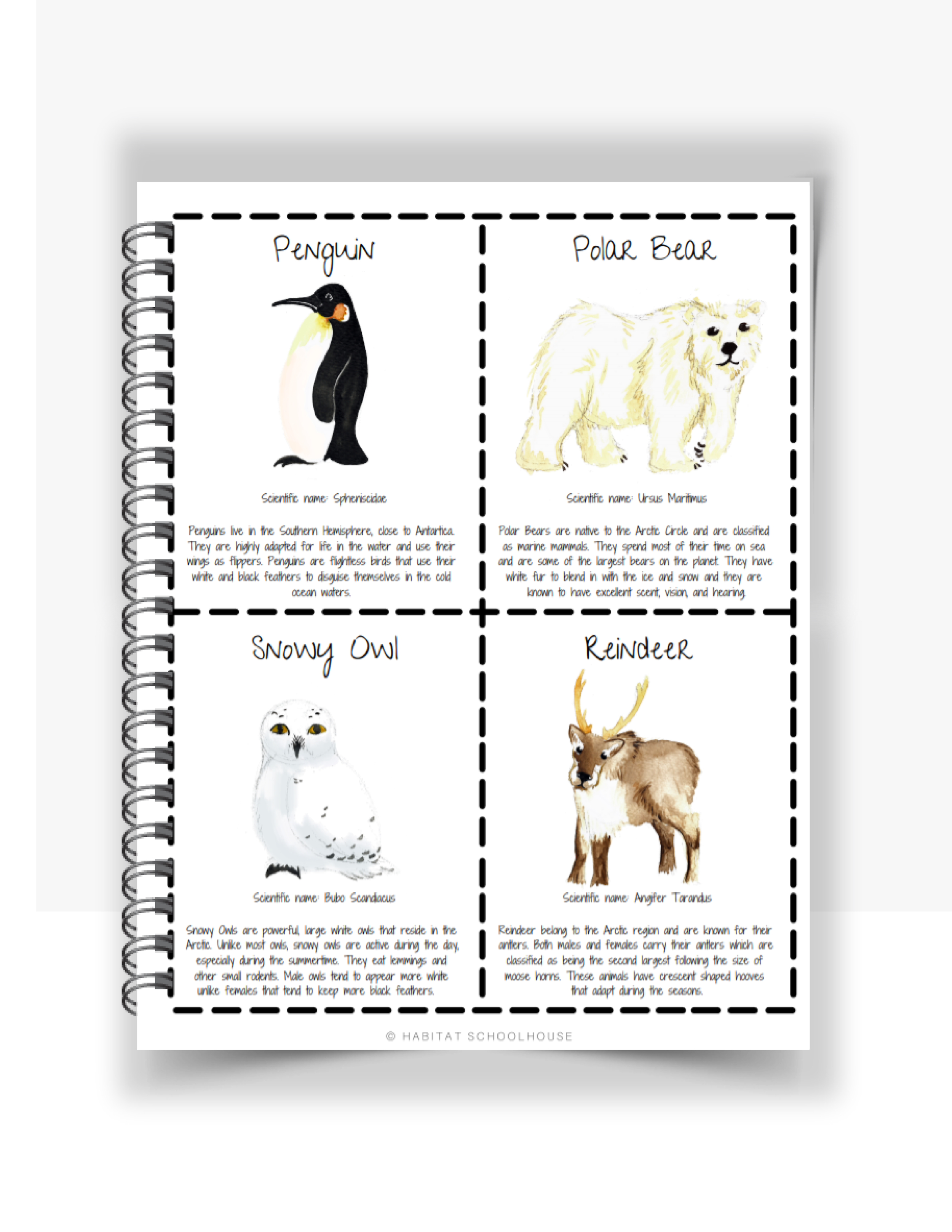 Curriculum Cover Pages (59).png