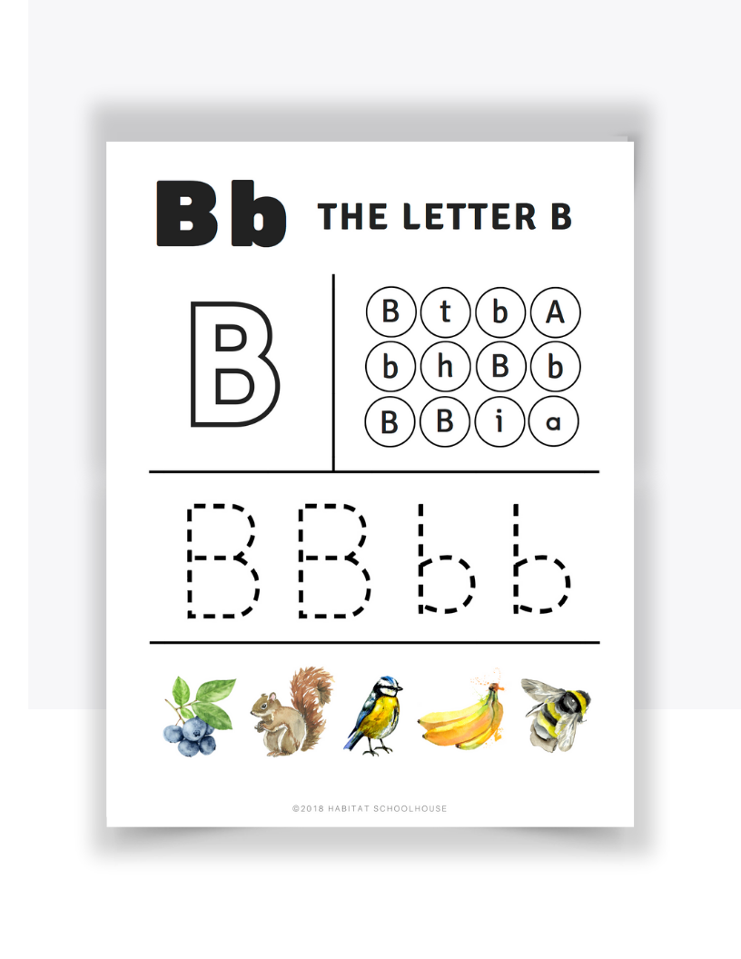Letter B Practice.png