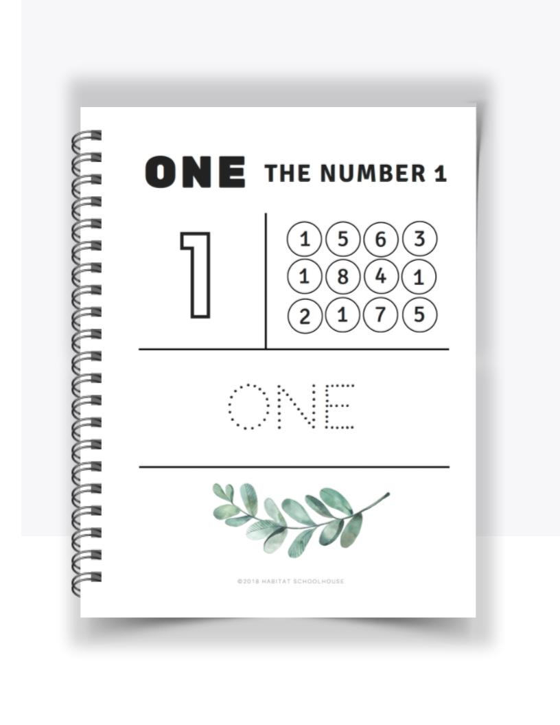 Number Practice Workbook.png