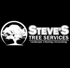 STEVEStreeservice.png