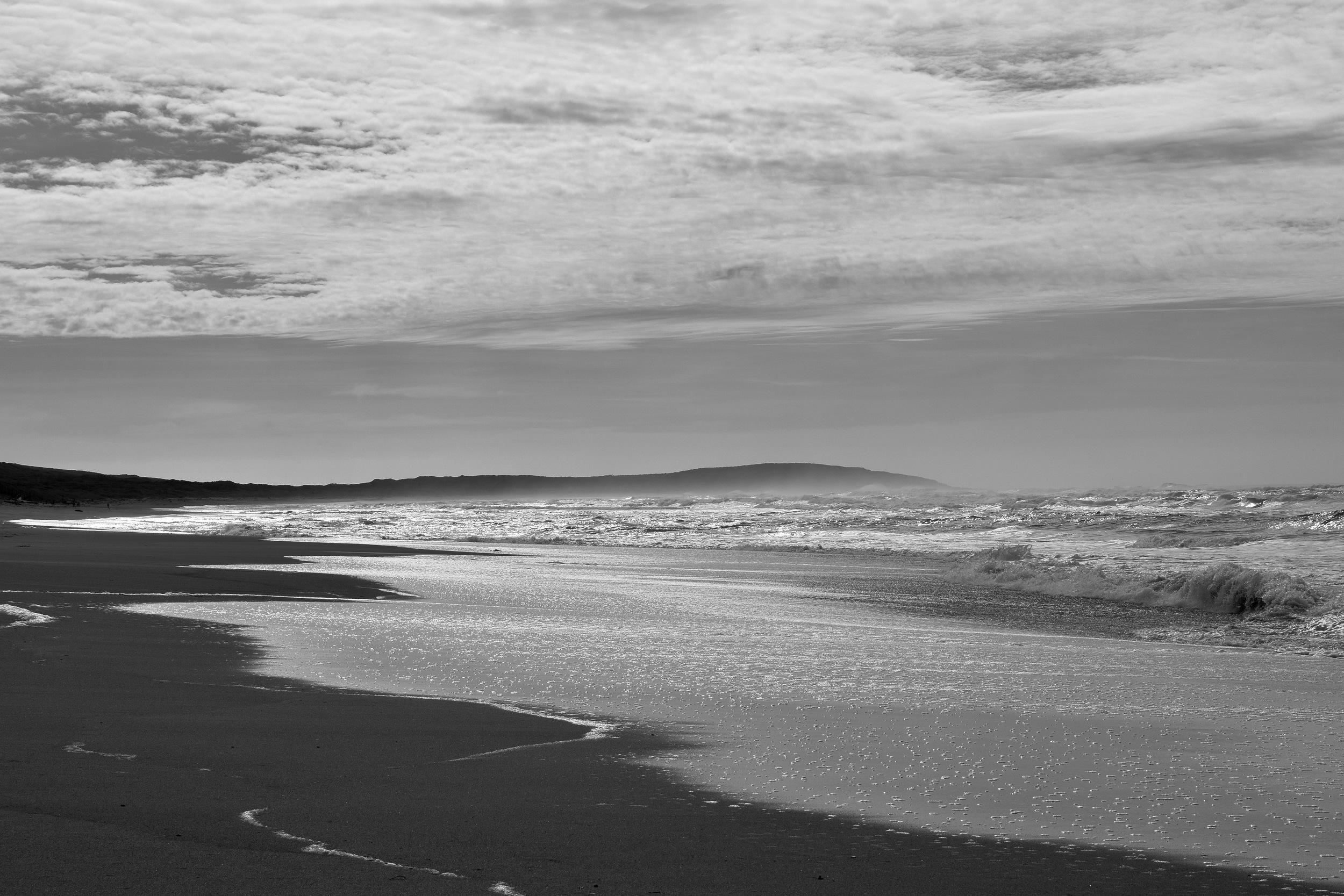 Salmon Creek Beach. photo by Andrew Lehman
