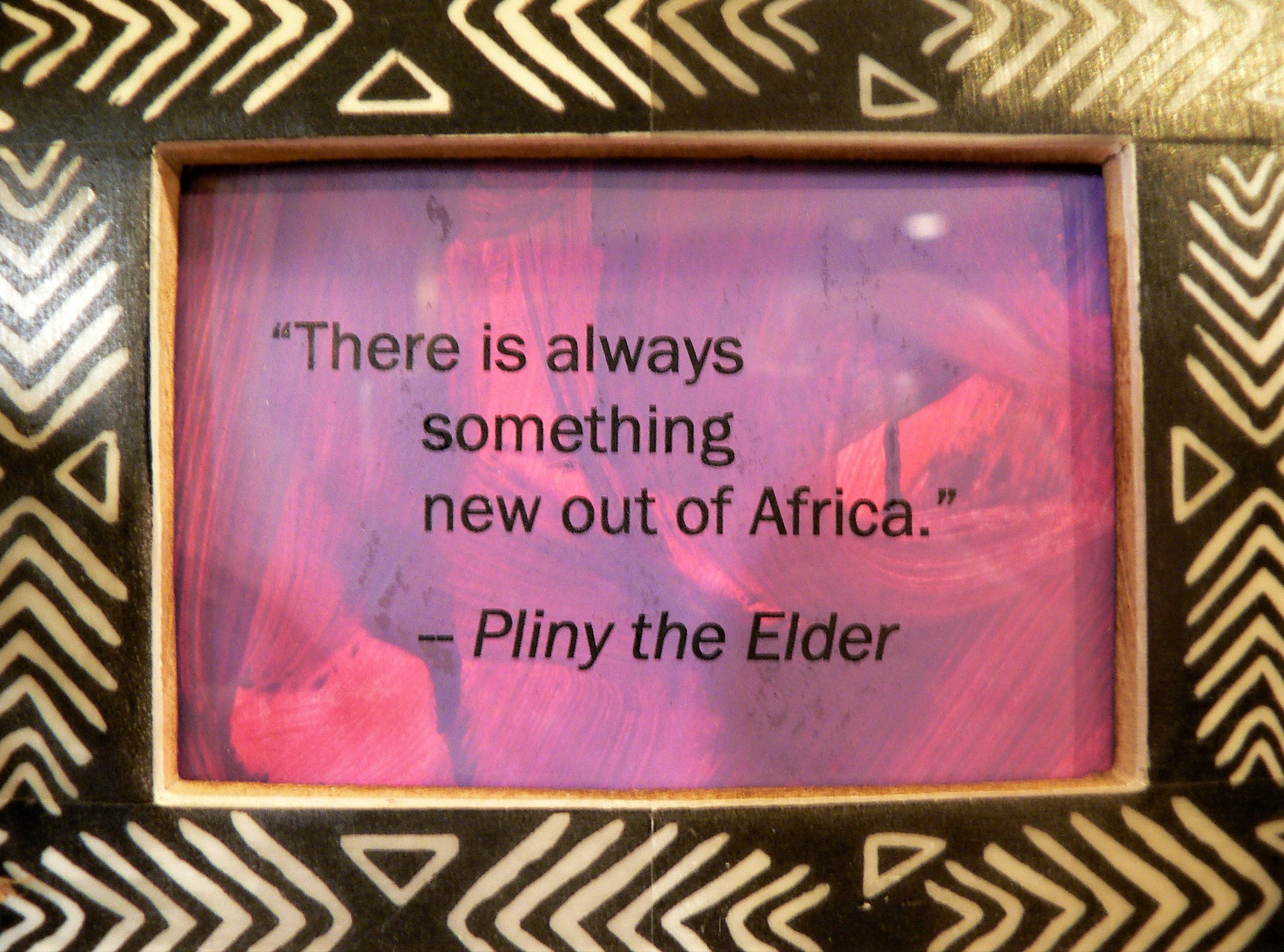 54 Africas Quote.JPG