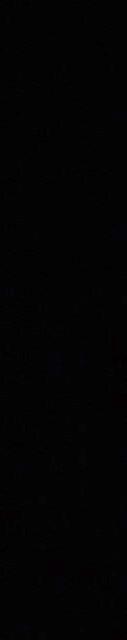 Black Carousel Spacer.jpg