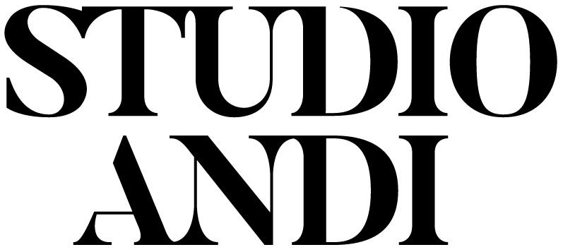 andi_logo-01.jpg
