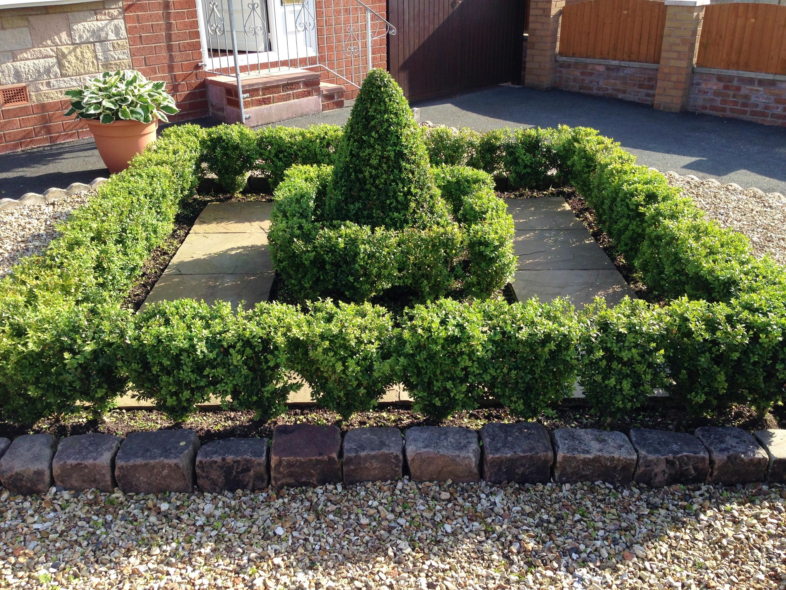 Low maintenance knot garden