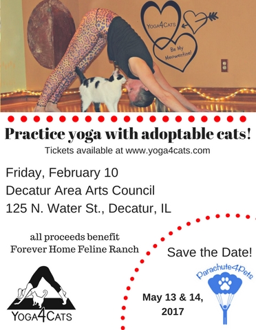We are thankful for the generosity of  Greater Decatur Homes & Lifestyle s for spreading the word about Yoga4Cats upcoming events!
