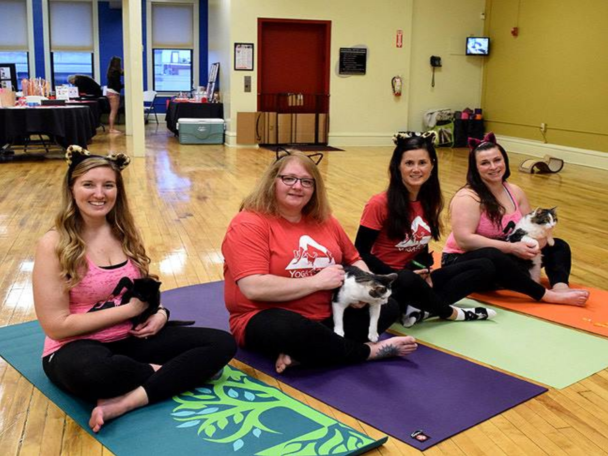 Team Yoga4Cats