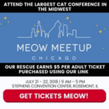 Register to attend the Meow Meetup in Chicago - use our code  Y4CATS  and $5 goes to Yoga4Cats!   Direct link:  https://www.eiseverywhere.com/ereg/index.php?eventid=316408&discountcode=Y4CATS