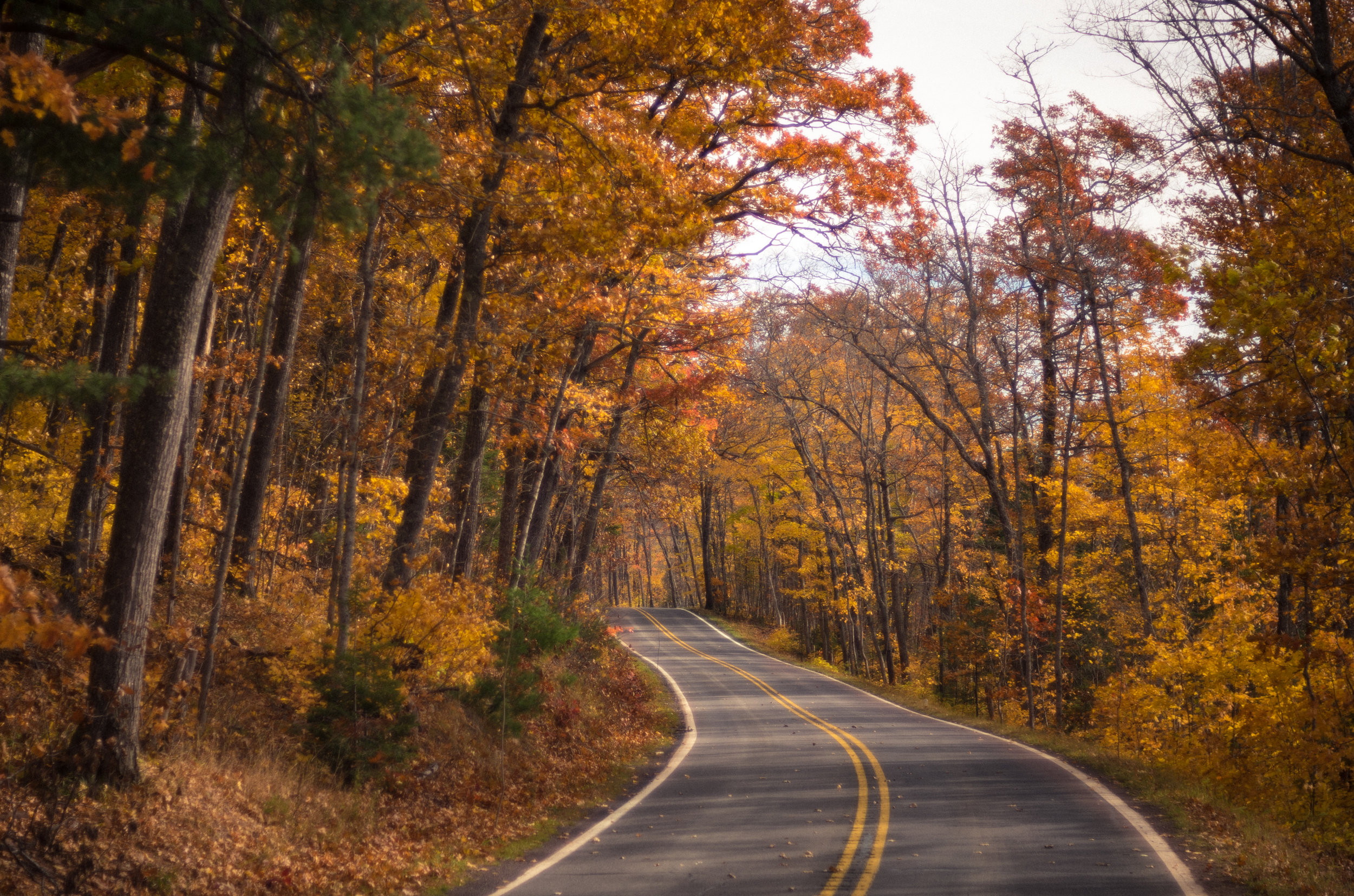 Fall Colors on Highway 41