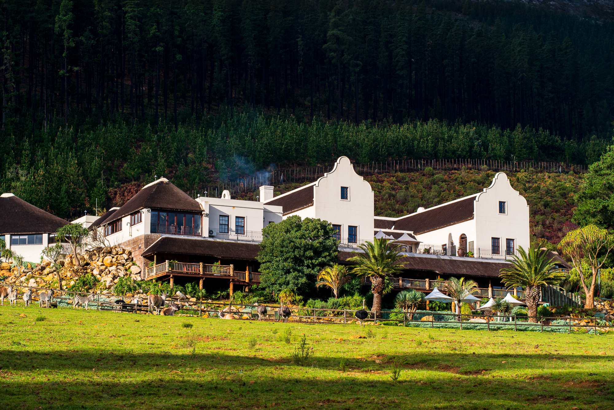 Marco Polo Lodge in Fransschoek