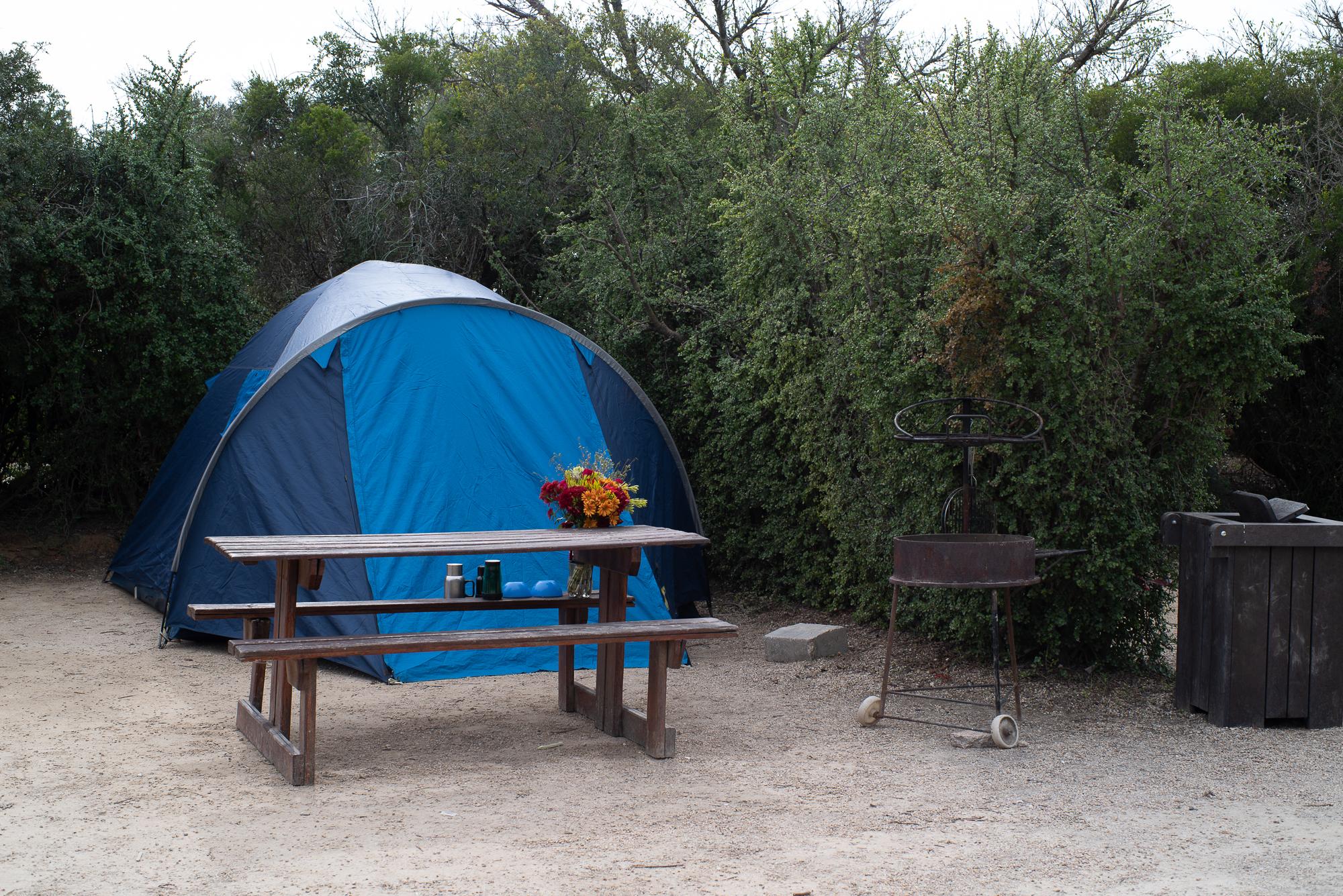 Kampeerplaats in Addo