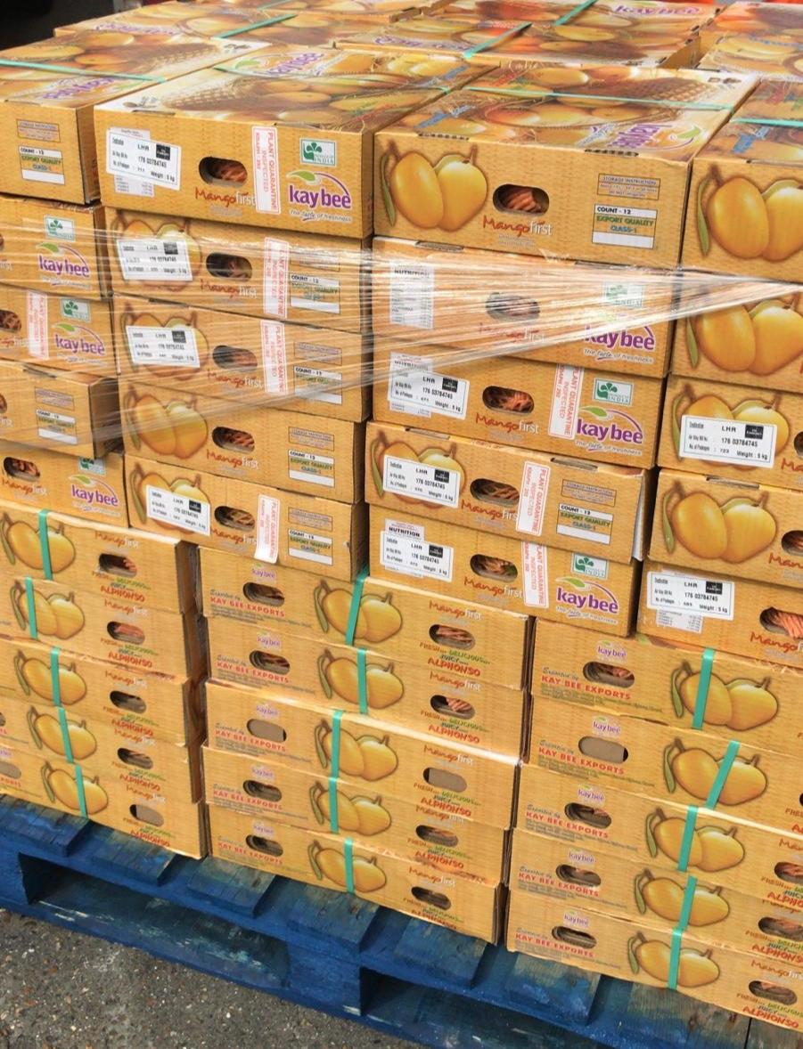 alphonso+mangoes.jpg