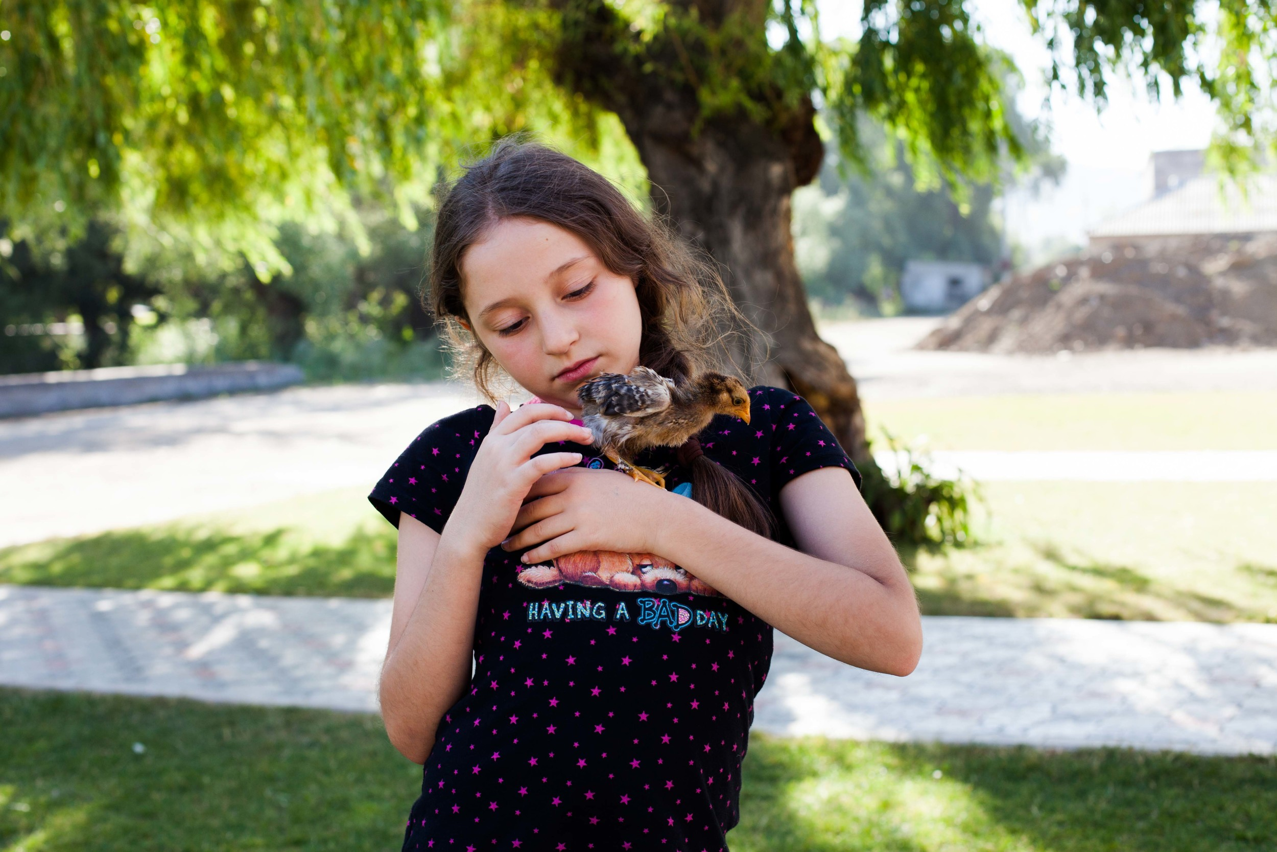 A young girl from California spends her summers in Spitak with her grandmother. Here she gets to learn the language that her parents speak, engage with the students at the YMCA, and help raise baby chickens and peacocks.