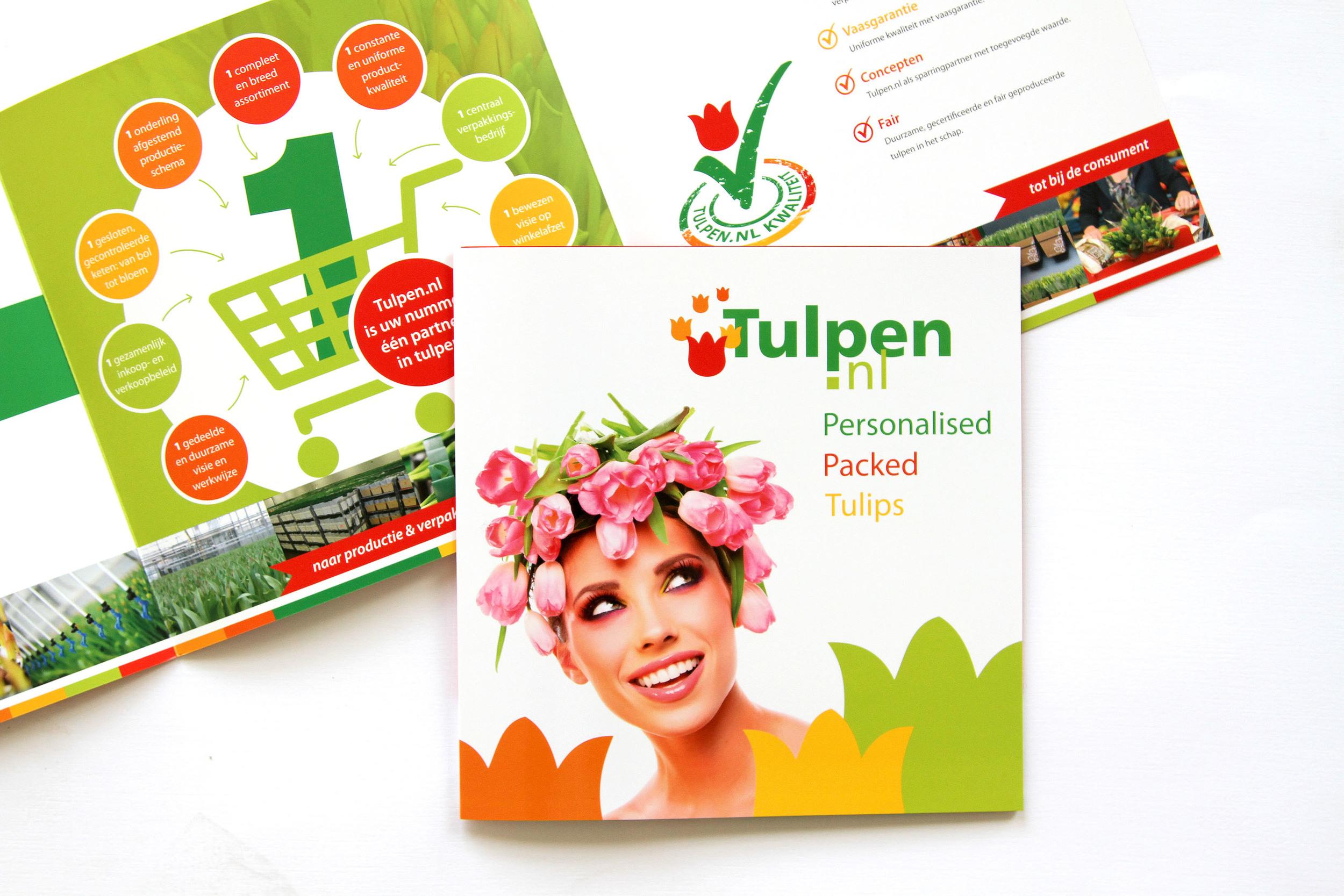 tulpen.nl 01.jpg