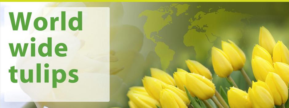 Wesselman Flowers online 02.jpg