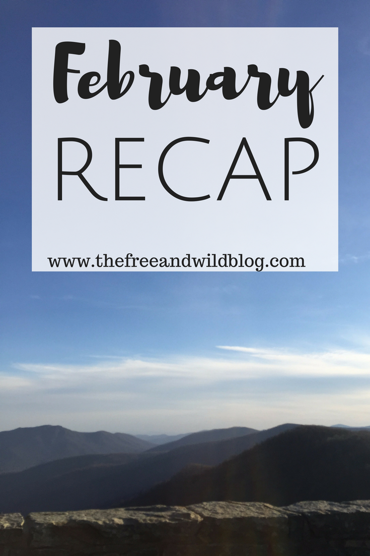 February Recap // The Free & Wild Blog