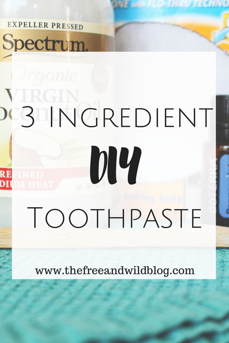 3 Ingredient DIY Toothpaste // The Free & Wild Blog