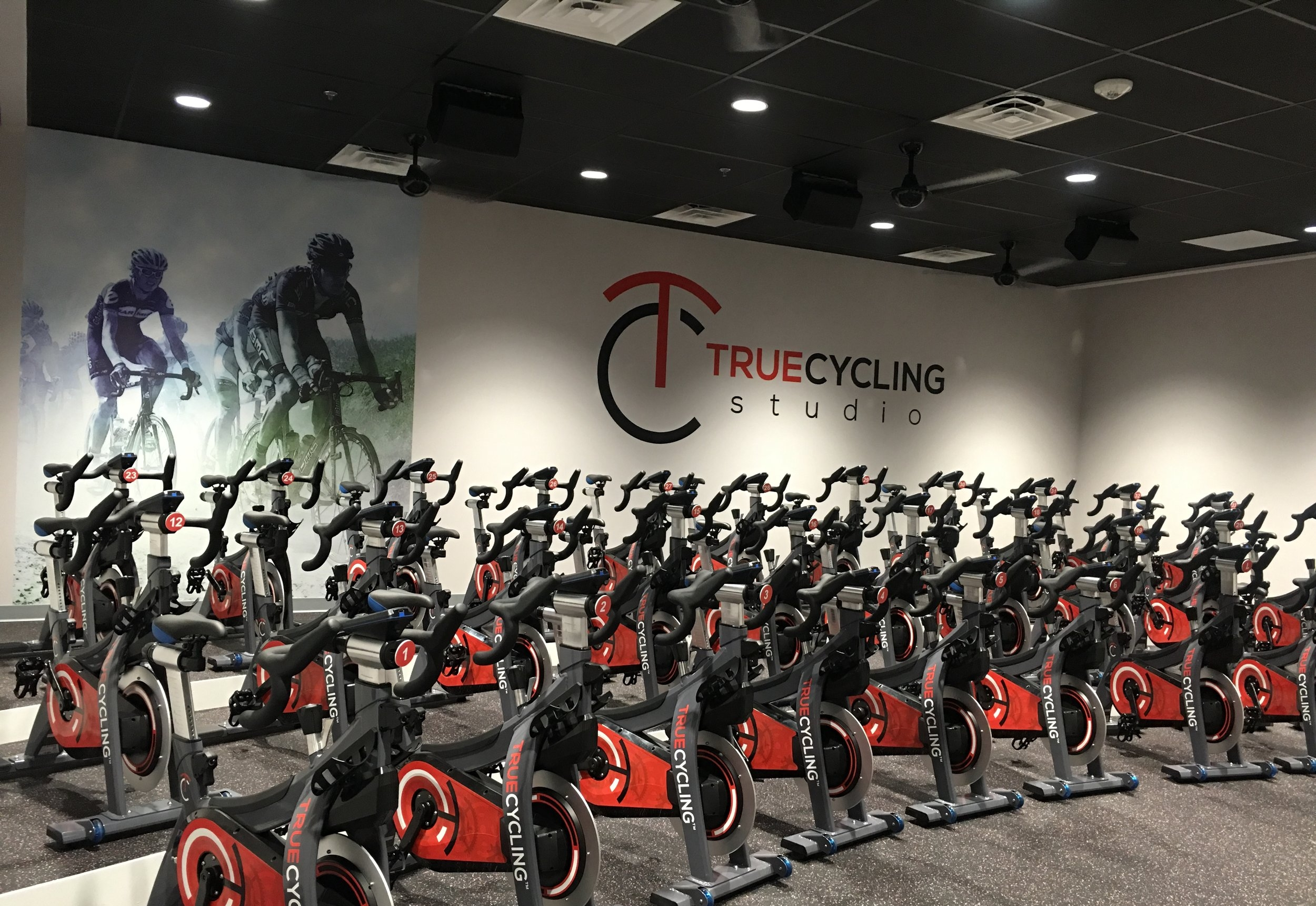 Find your True Fitness    Schedule a Class Today