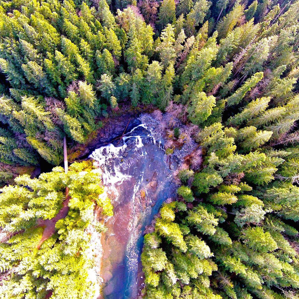 Mount Arrowsmith BR, British Columbia