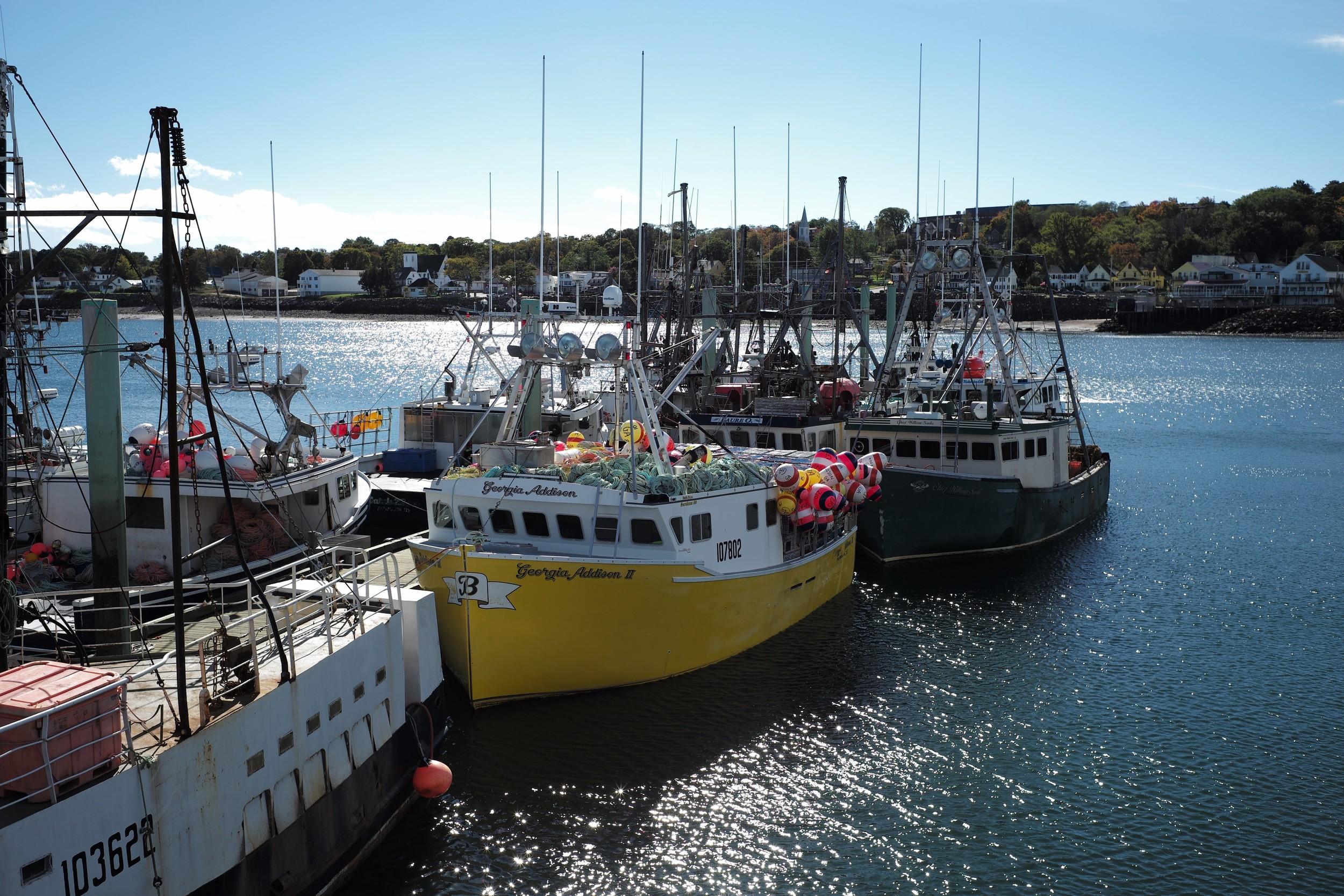Southwest Nova BR, Nova Scotia