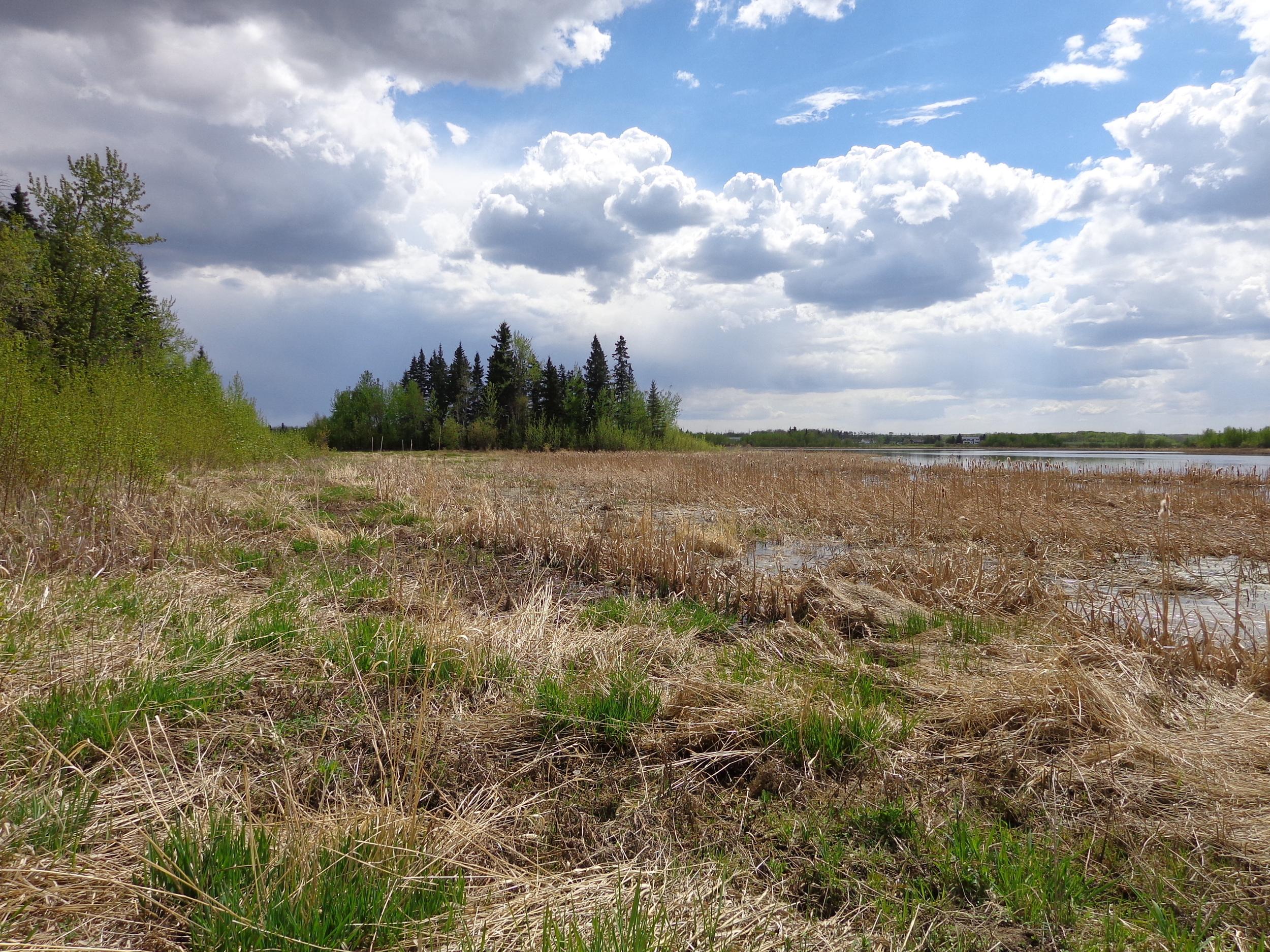 Beaver Hills BR, Alberta