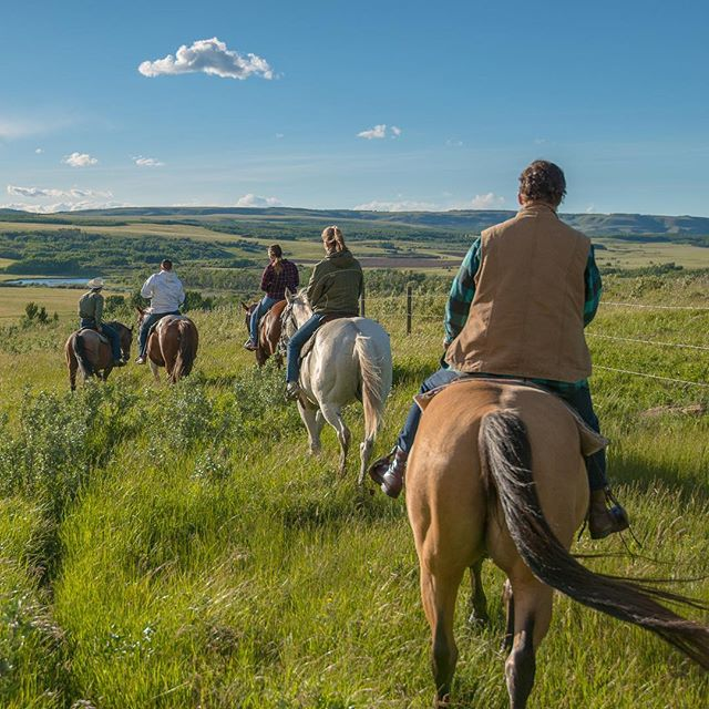 Get away from all the noise of life and enjoy a horseback ride with the @elkridgetrailrides. You will get amazing views all around you while you ride along. #explorecardston #scenicsunday #myalbertasw #explorealberta #cardston #summer2018 #horse #horsebackriding #mountains