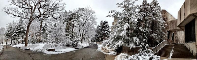 winterlibrary.jpg