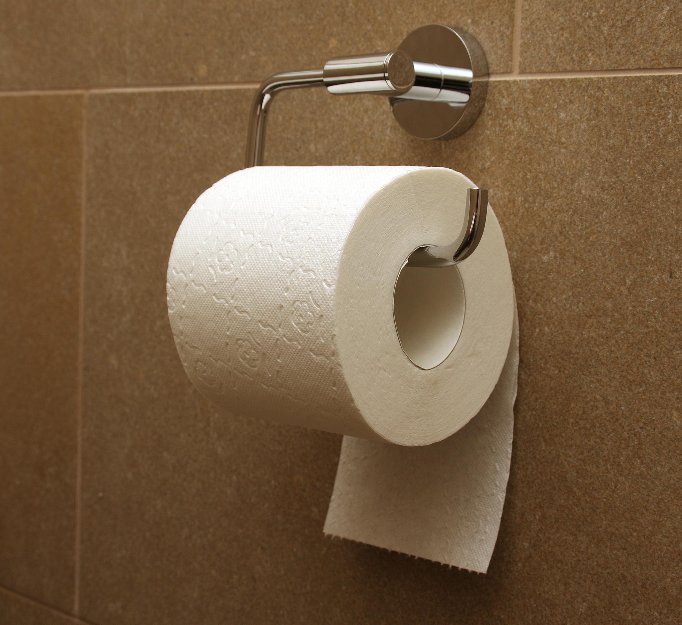 Toilet_paper_orientation_under.jpg
