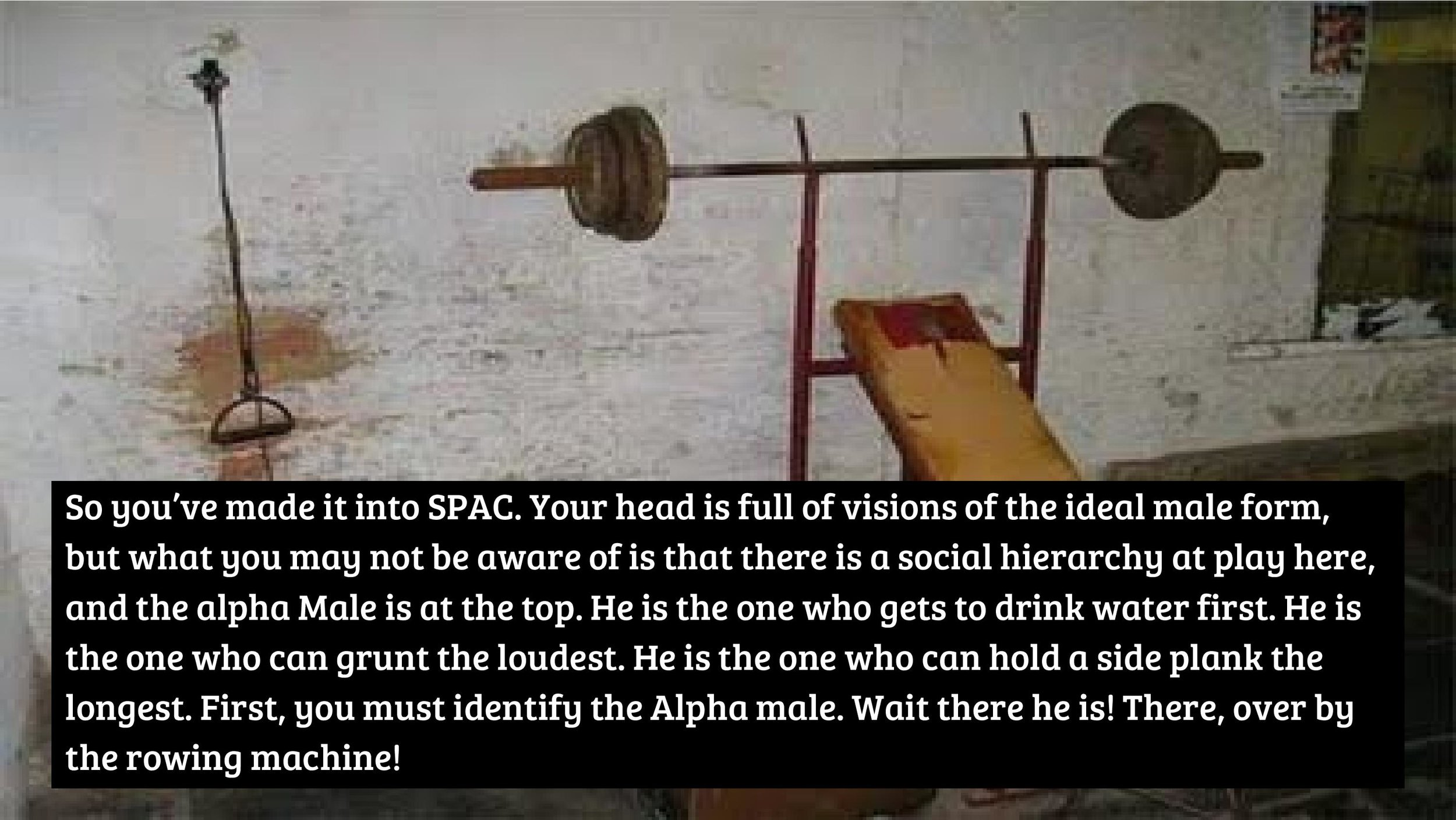 It s Time to Assert Your Alpha Male Status at SPAC-page-002.jpg