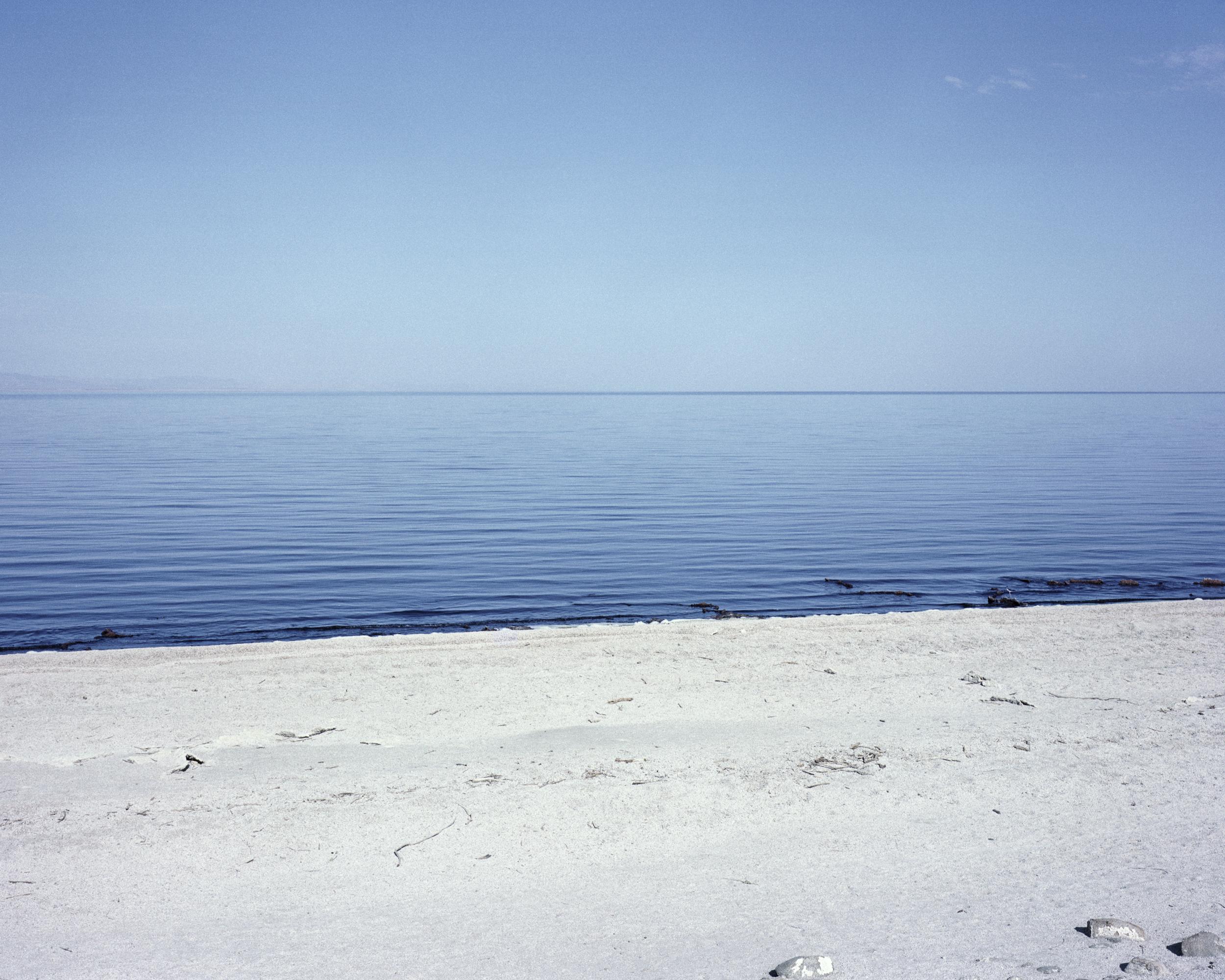 The Sea , 2017