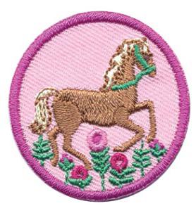 Girl Scout Badge Horseback Riding.jpeg