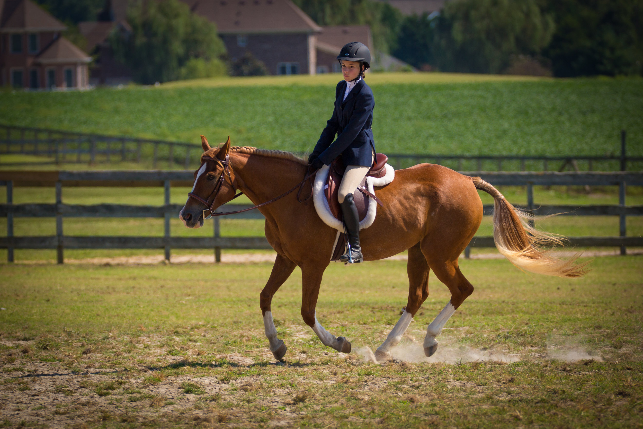 The goal is a relaxed rider and a responsive horse.