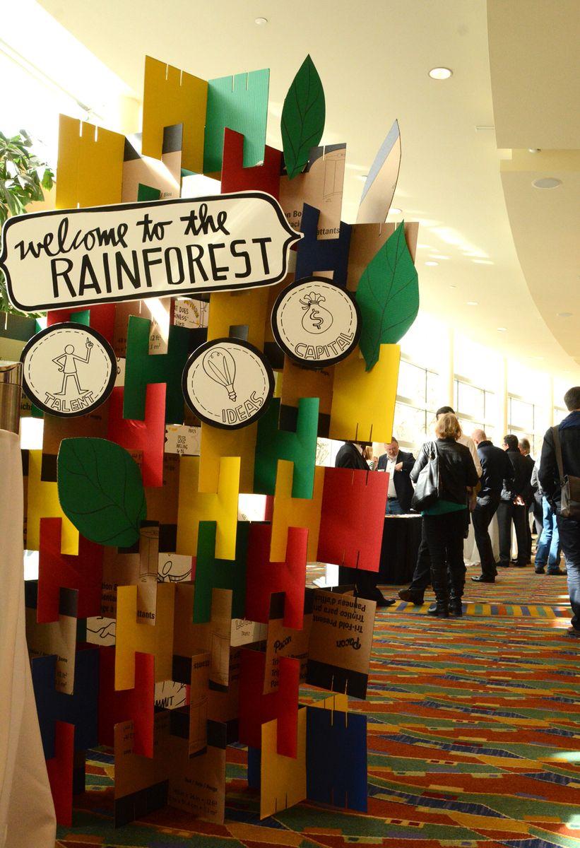 DIY_Rainforest