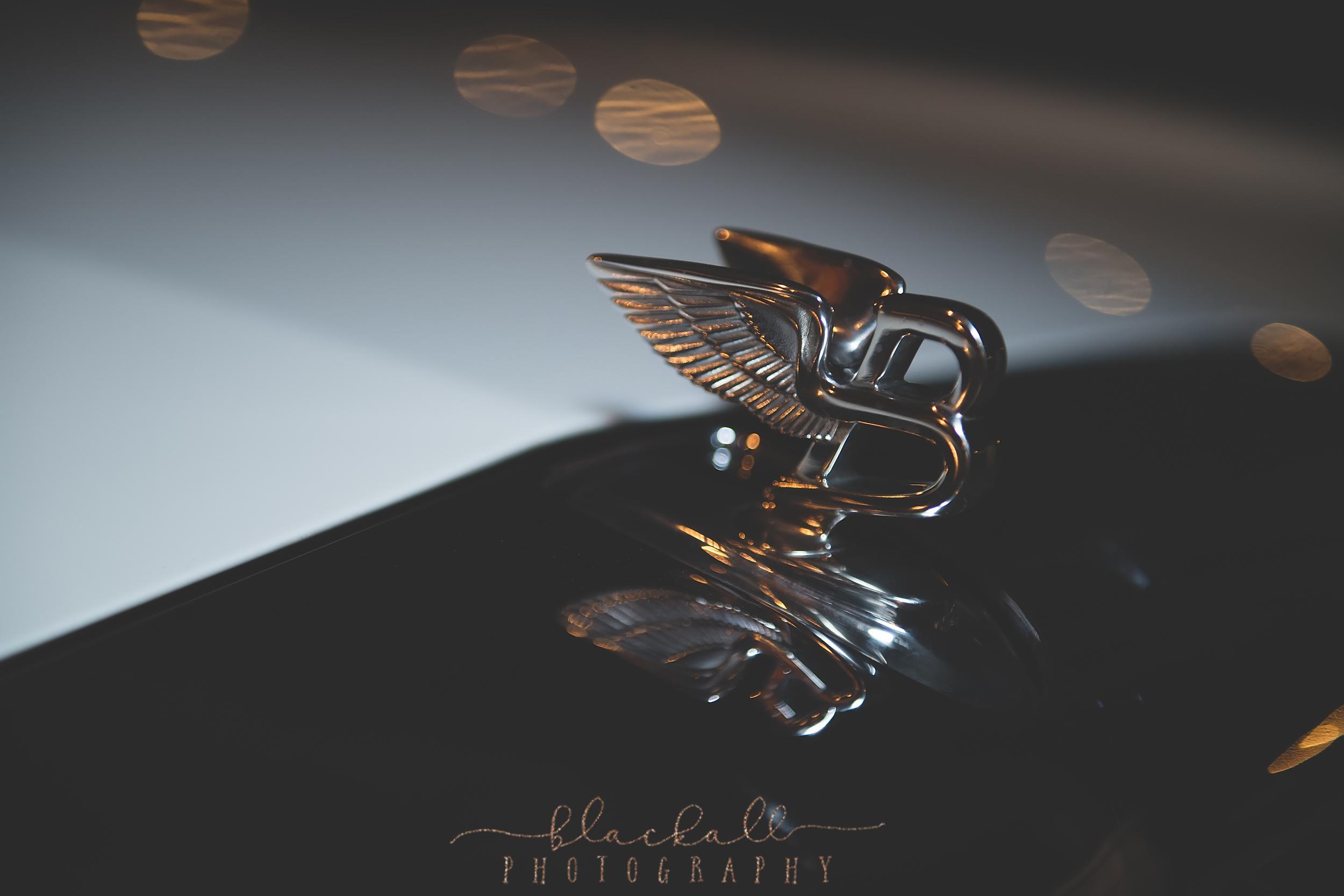 blackallphotography-58.JPG