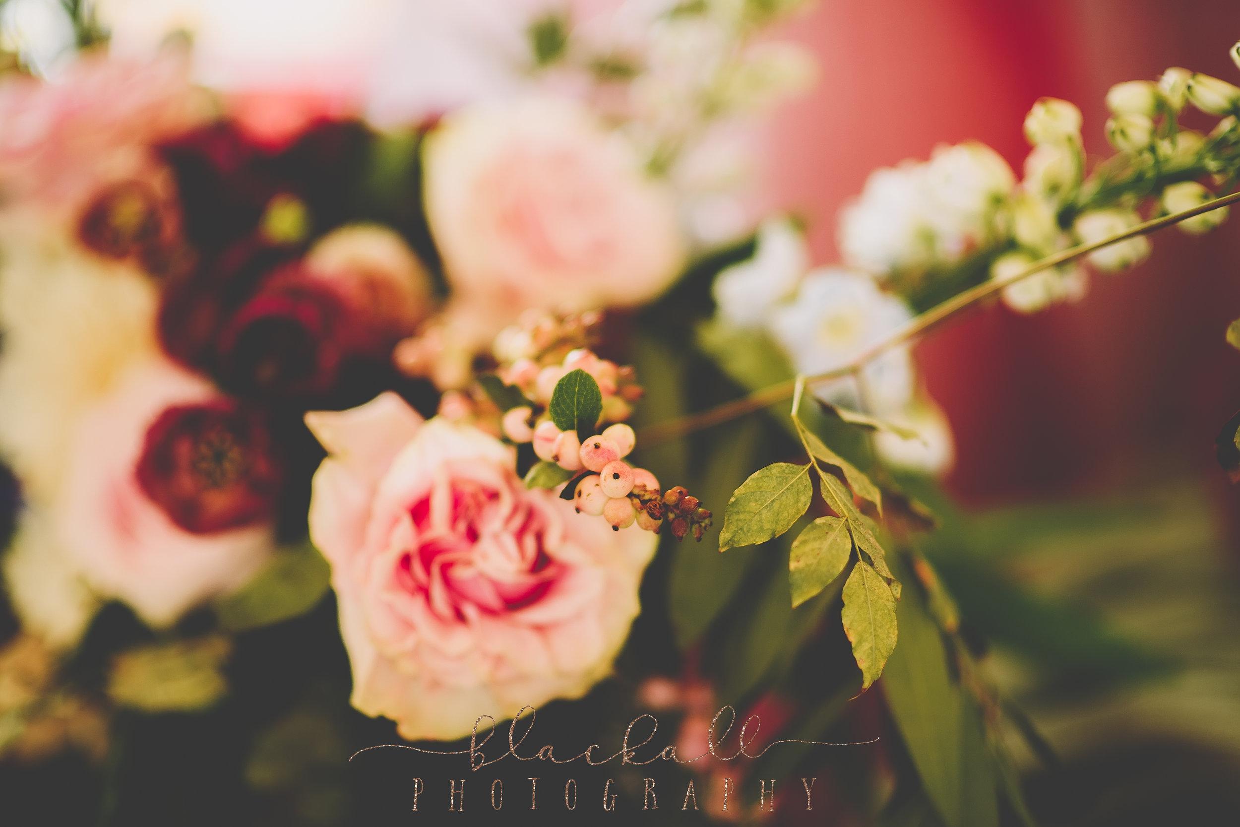 HHR_BlackallPhotography_16.JPG
